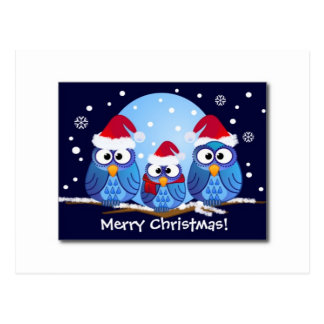 SANTA'S CUTE CHRISTMAS OWLS POSTCARD