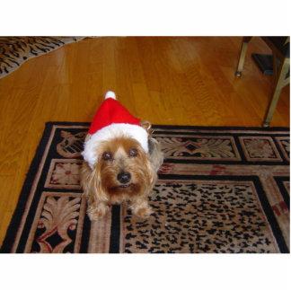 Santa's Dog Photo Sculpture Ornament
