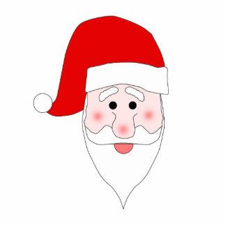 Santa's Face Photo Sculpture