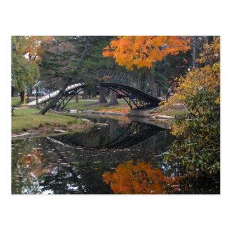SANY4603 Fall Foliage Postcard