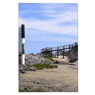 Sapelo Island Beach Dry-Erase Whiteboards