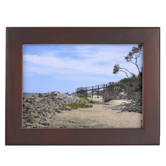 Sapelo Island Beach Memory Box