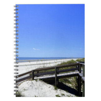 Sapelo Island Note Book