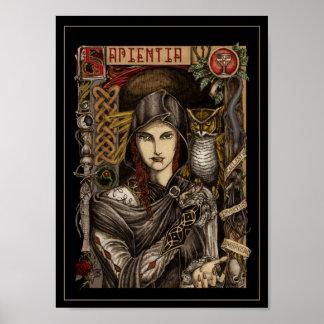 Sapientia Latin for Wisdom Poster