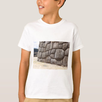 Saqsaywaman Snake Pictogram T-Shirt