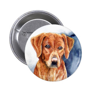 Sara Dog The Golden Retriever Button