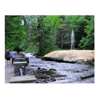 Saratoga Spa State Park-Geyser Creek Postcard