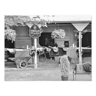 "Saratoga Stables ""Horse Haven"" Photo Print"