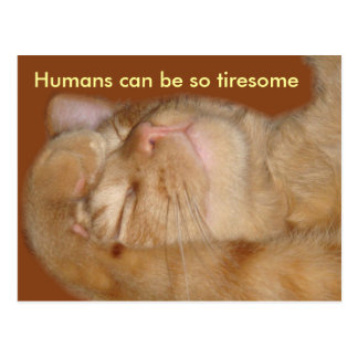 Sarcastic Cat - Humans Can Be So Tiresome Post Card