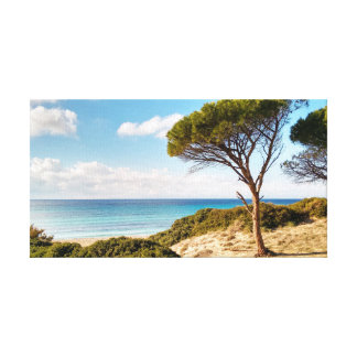 Sardinia, Porto Sa Ruxi beach Canvas Print
