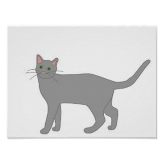 Sasquatch s Cat Poster
