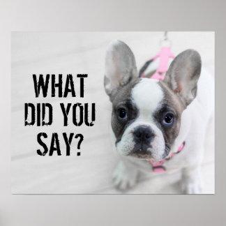 Sassy French Bulldog Poster