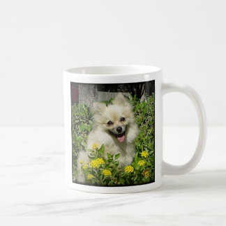 Sassy - Happiness is the love of an adopted Pomera Coffee Mug
