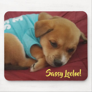 Sassy Leeloo, Sleepy Puppy Mousepad