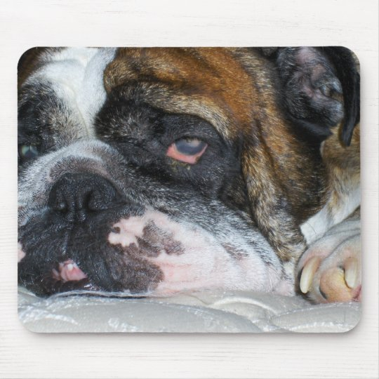 Sassydog English bulldog mouse pad