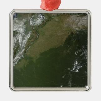 Satellite view of eastern Columbia Silver-Colored Square Ornament