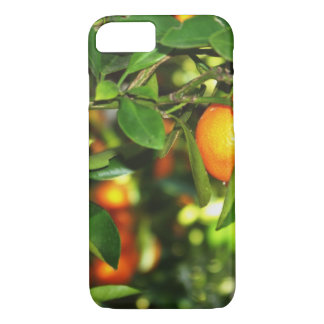 Satsuma Mandarin Cell Phone Case