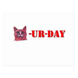 Saturday is Caturday Postcard