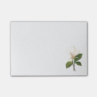 saucer magnolia(Magnolia soulangiana) by Redouté Post-it® Notes