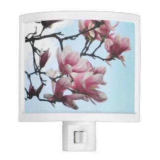 Saucer Magnolia Tulip Tree Pink White Flowers Nite Light