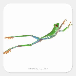 Sauter observé par rouge de grenouille d arbre sticker carré