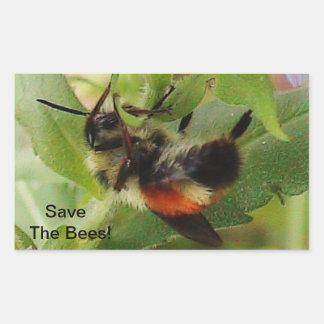Sauvez le macro autocollant de photo d'abeilles
