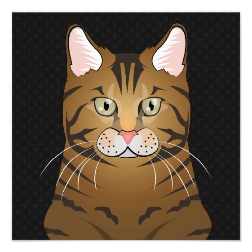 Savannah Cat Cartoon Paws Art Photo