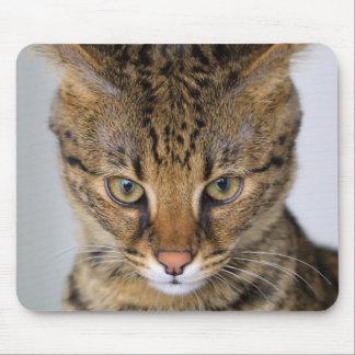 Savannah Cat Mouse Pad