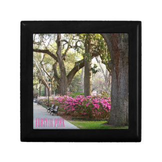 Savannah Georgia Forsyth Park | Azaleas in Spring Gift Box