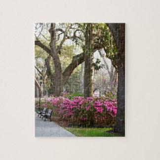 Savannah Georgia in Spring Forsyth Park Azaleas Oa Puzzle