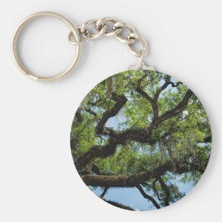Savannah Live Oak And Spanish Moss Basic Round Button Keychain