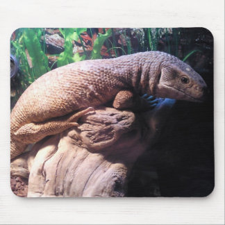 Savannah Monitor Mouse Pad