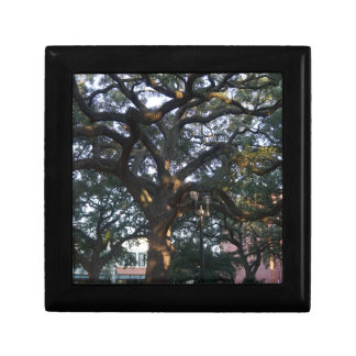 Savannah Oak Jewelry Boxes