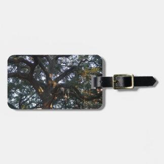 Savannah Oak Luggage Tag