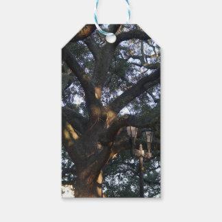 Savannah Oak Pack Of Gift Tags
