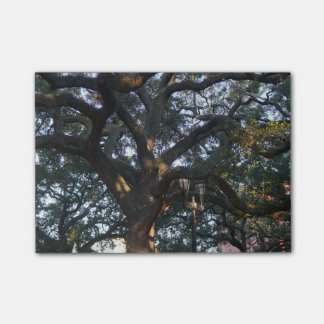 Savannah Oak Post-it® Notes