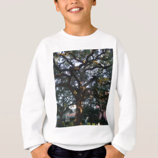 Savannah Oak Sweatshirt