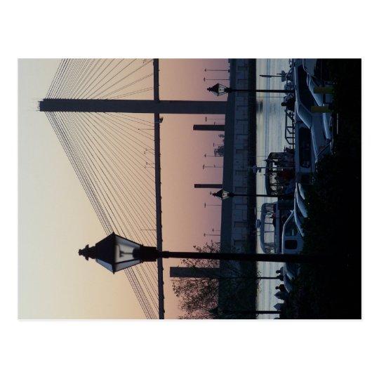 Savannah River Street Postcard
