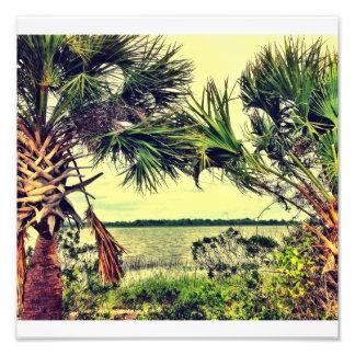 Savannah River View Art Photo