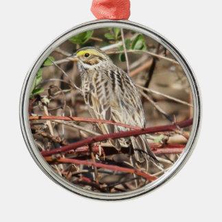 Savannah Sparrow Silver-Colored Round Ornament