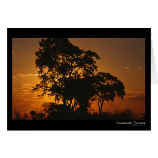 Savannah Sunset Card