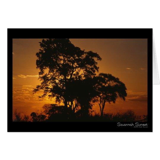 Savannah Sunset Card