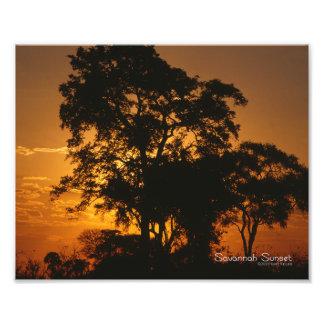 Savannah Sunset Photograph