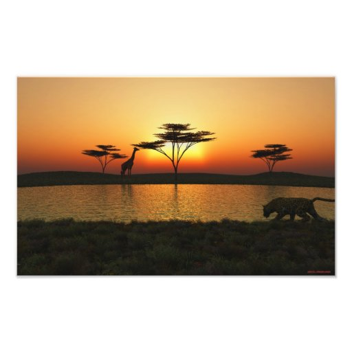 Savannah Sunset Photoprint Photograph