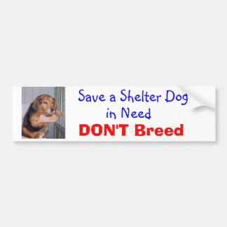 Save a Shelter Dog in Need -- Paxton Bumper Sticker