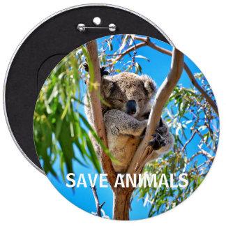 Save Animals Save Koalas 6 Inch Round Button