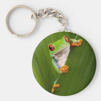 Save eyed tree frog keychain
