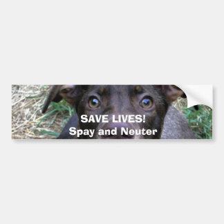 SAVE LIVES!Spay and Neuter Bumper Sticker