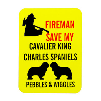Save My Two Cavalier King Charles Spaniel Dogs Rectangular Photo Magnet
