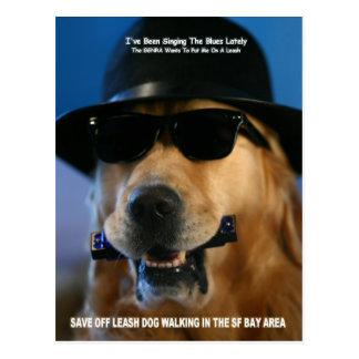 Save Off-Leash Dog Walking Congresswoman Pelosi Postcard